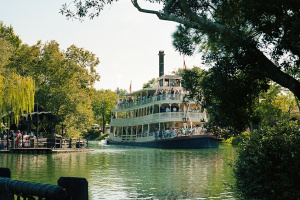 RFIRiverboat